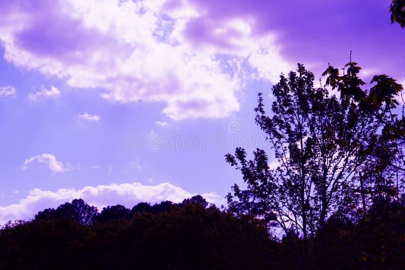 Ciel pourpre de lumière images libres de droits