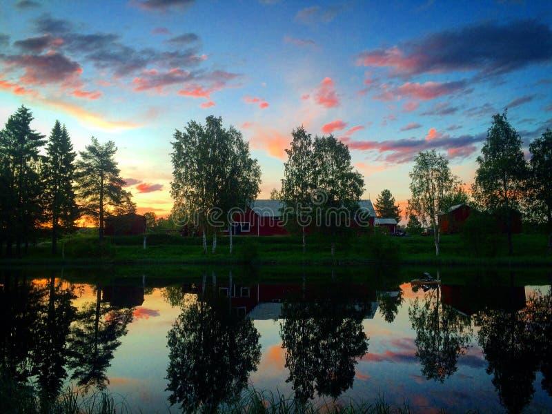 Ciel rose de soirée avec des réflexions des arbres dans l'eau photographie stock libre de droits