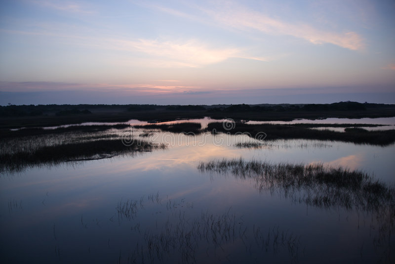 Ciel se reflétant dans le marais. photographie stock libre de droits