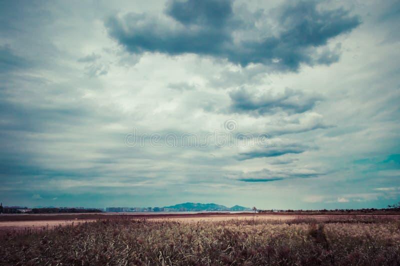 Ciel sur la prairie d'automne images stock
