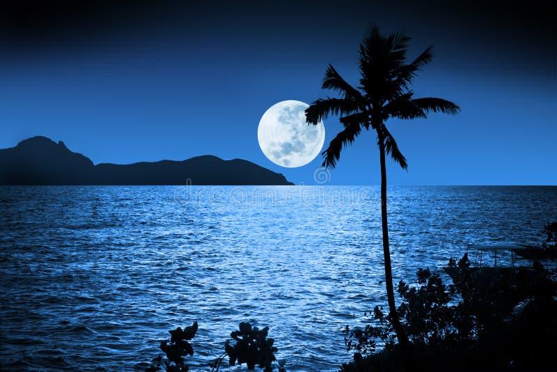 Ciel tropical de pleine lune images libres de droits