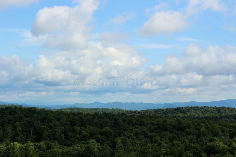 Cieli blu luminosi al di sopra, con l'annuvolamento e le foglie verdi sane sugli alberi alla sommità della montagna immagine stock libera da diritti