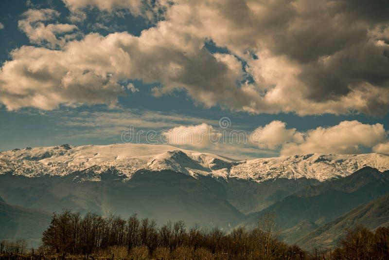 Cieli, montagna con neve ed alberi scenici, Grecia fotografia stock libera da diritti