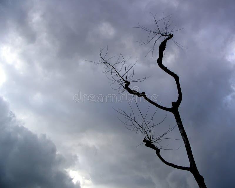 Cieli tempestosi fotografia stock libera da diritti