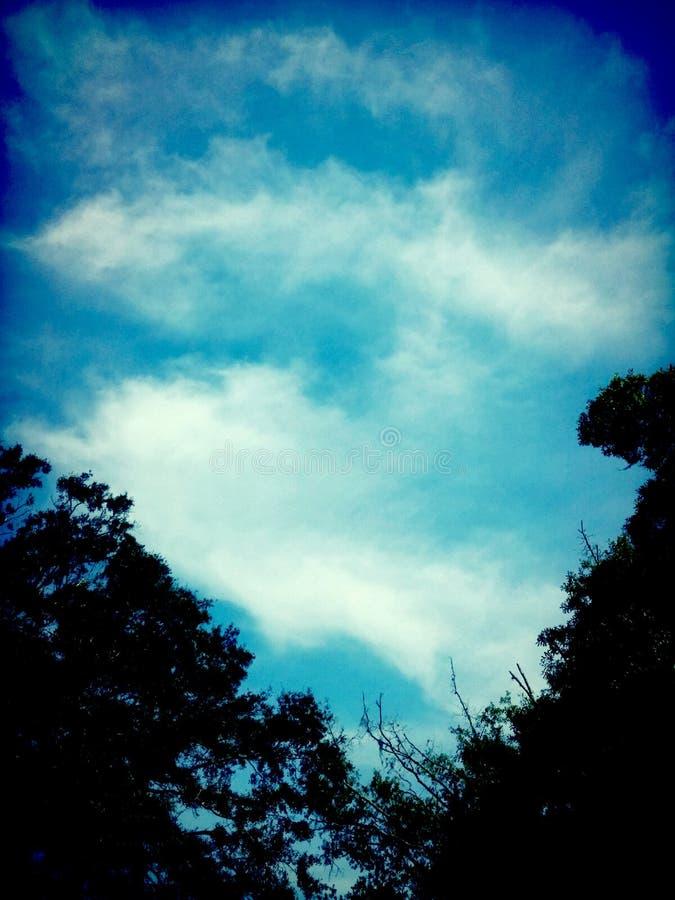 Cielo 1 fotografie stock libere da diritti