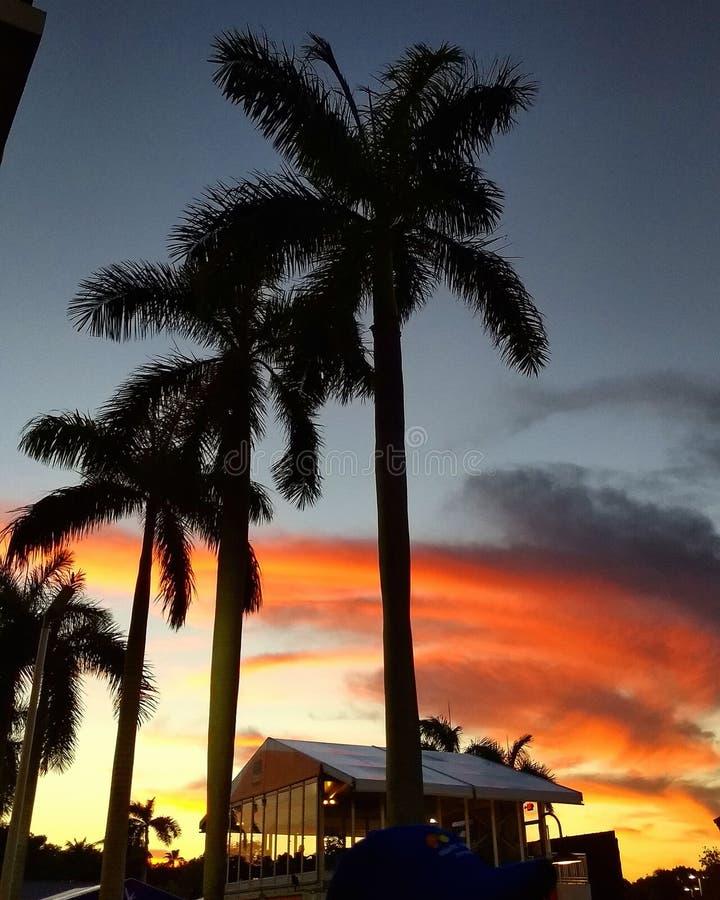 Cielo anaranjado fotografía de archivo