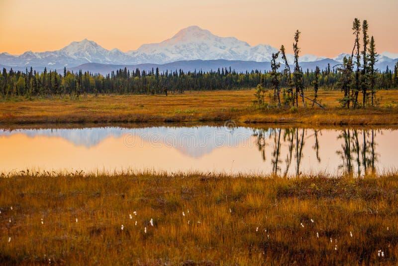 Cielo anaranjado sobre el Mt Mc Kinley en Alaska de Petersville Rd foto de archivo libre de regalías