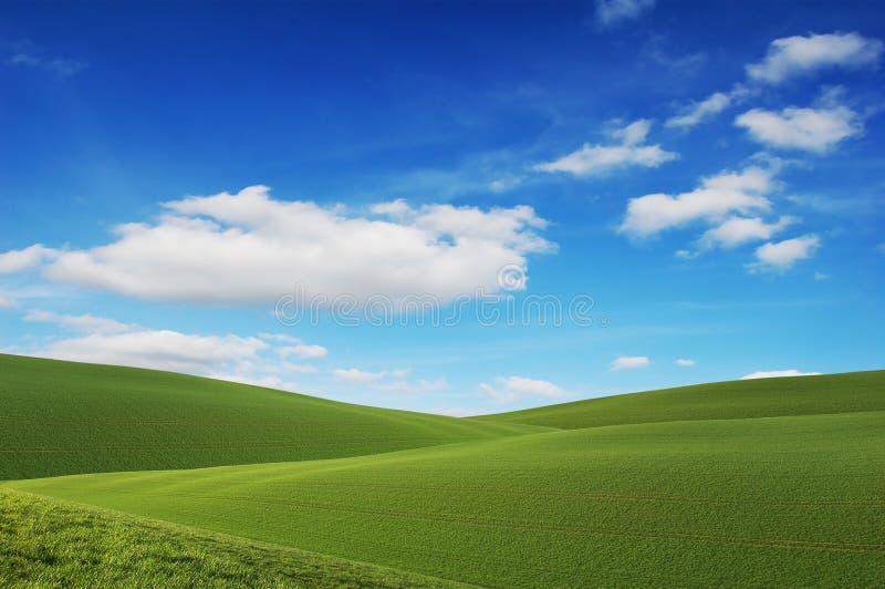 Cielo azul, campos verdes foto de archivo libre de regalías