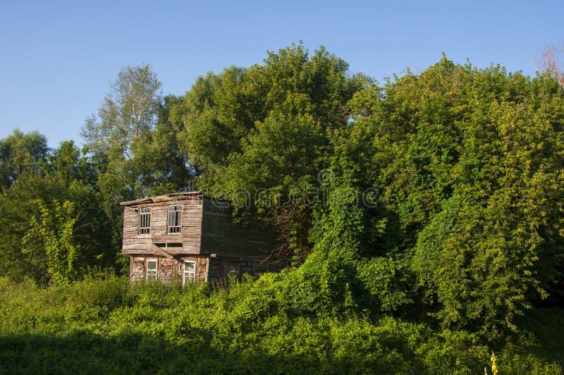 Cielo azul claro en el verano caliente sobre la casa abandonada vieja construida de la madera lejos en los árboles del Forest Gre fotos de archivo libres de regalías
