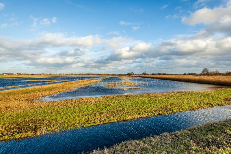 Cielo azul con las nubes reflejadas en el agua de una parte inundada de un pólder holandés imagenes de archivo
