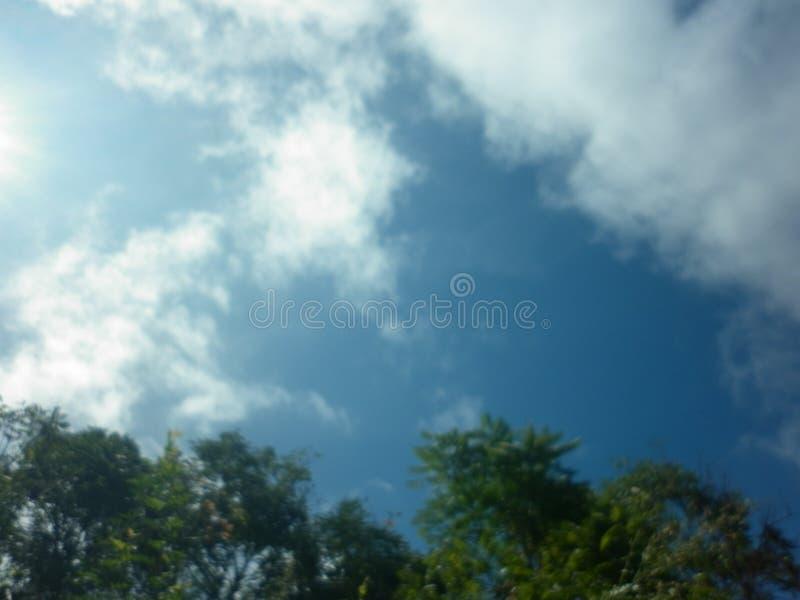 Cielo azul con las nubes y los árboles oscuros imagen de archivo