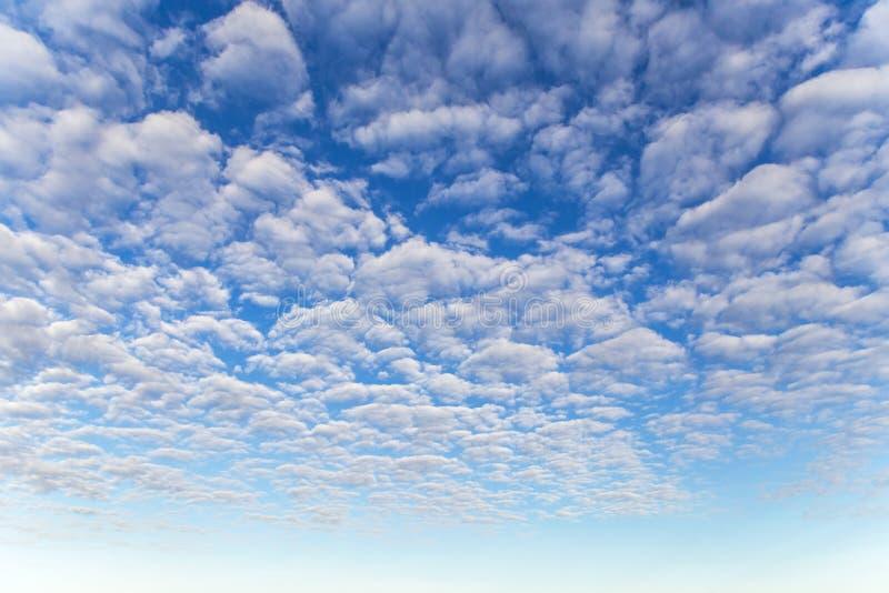 Cielo azul con muchas nubes mullidas blancas imágenes de archivo libres de regalías