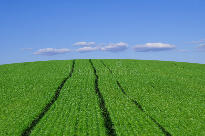 Cielo azul de las tierras de labrantío foto de archivo libre de regalías