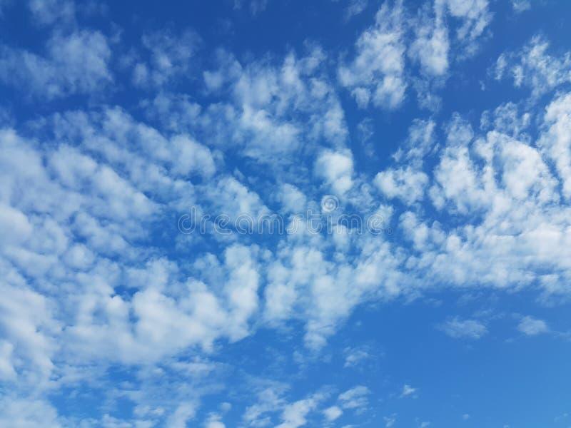 Cielo azul del cloudscape del verano con el fondo en blanco vacío natural de la atmósfera nublada de las nubes imagen de archivo