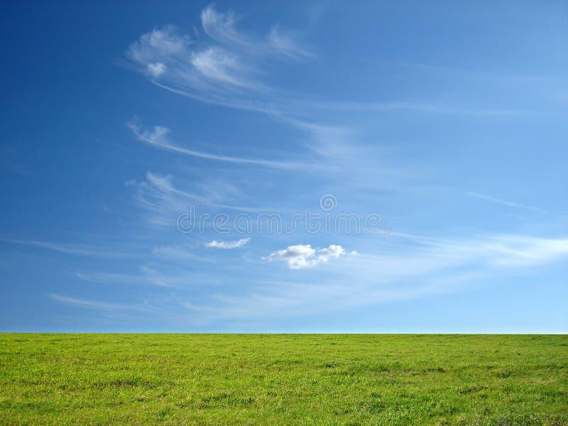 Cielo azul e hierba verde imagen de archivo