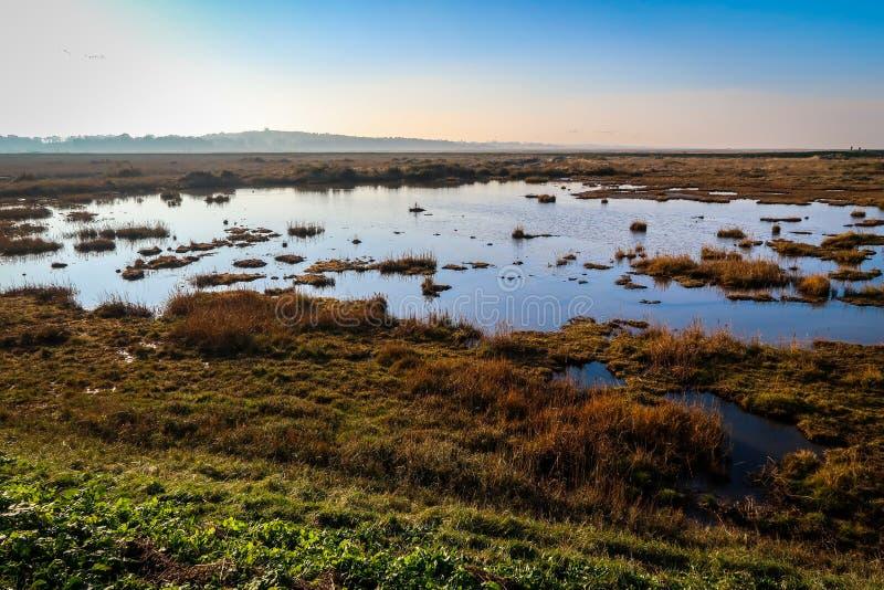 Cielo azul en un día soleado en Norfolk del norte, Inglaterra fotografía de archivo libre de regalías