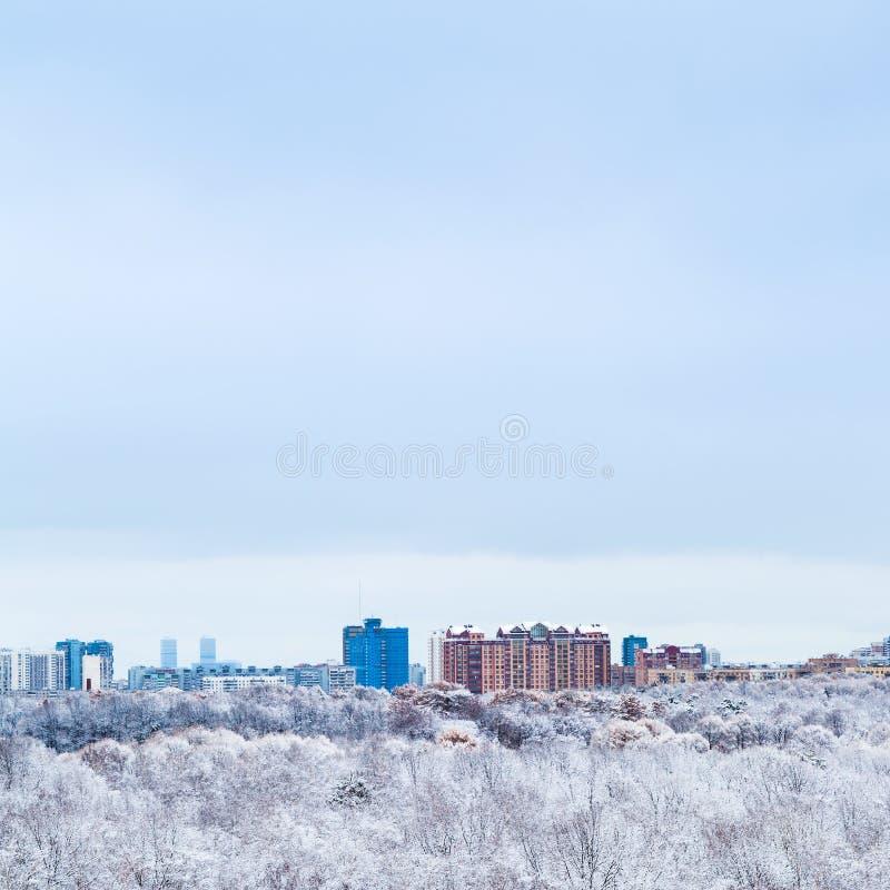 Cielo azul frío sobre el bosque de la ciudad y de la nieve en invierno foto de archivo