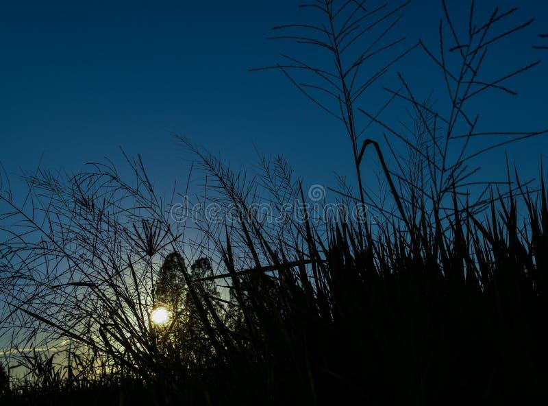 Cielo azul hermoso con puesta del sol hermosa fotos de archivo libres de regalías