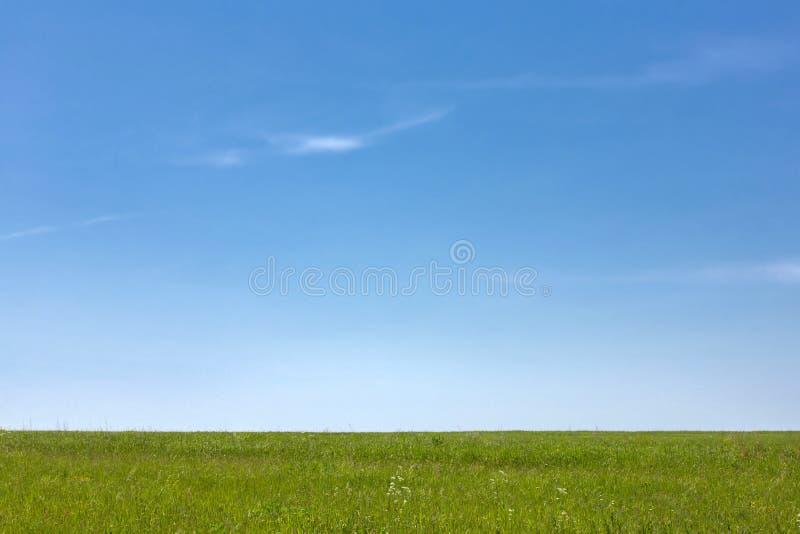 Cielo azul, hierba verde horizonte Campo D?a asoleado del verano imagenes de archivo