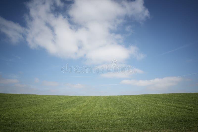 Cielo azul, hierba verde, nubes blancas imagen de archivo