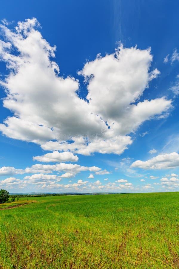 Cielo azul sobre el llano foto de archivo. Imagen de fondo - 40338308