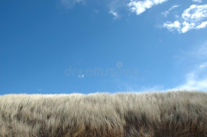 Cielo azul sobre las dunas de la playa fotografía de archivo libre de regalías