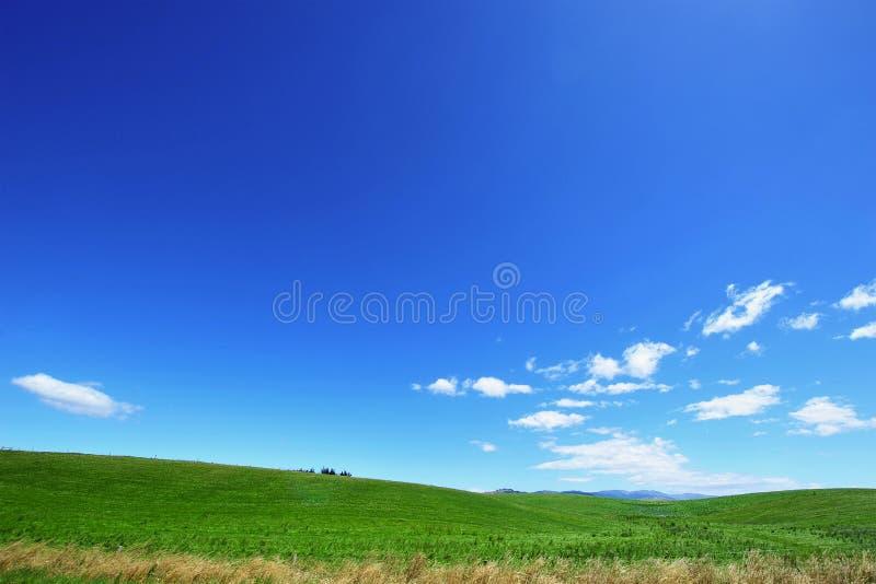 Cielo azul y campo verde fotos de archivo libres de regalías