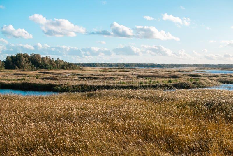 Cielo blu Autumn Time Sunlight del paesaggio del lago fotografia stock libera da diritti