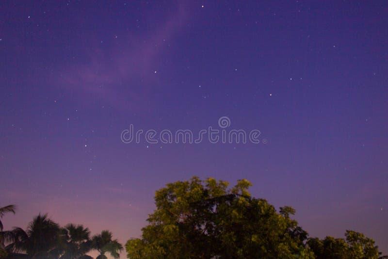 Cielo blu con le stelle fotografia stock