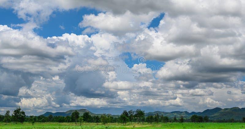 Cielo blu e bella nuvola con l'albero del prato fotografia stock libera da diritti