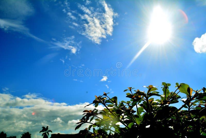 Cielo blu e sole fotografia stock libera da diritti