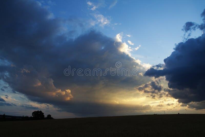 Cielo blu nuvoloso di primo mattino sopra il campo fotografia stock libera da diritti