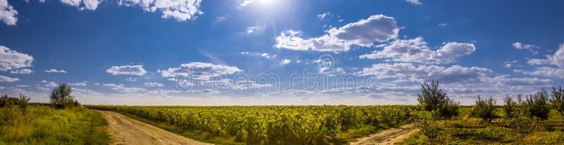 Cielo blu profondo in Ucraina fotografia stock libera da diritti