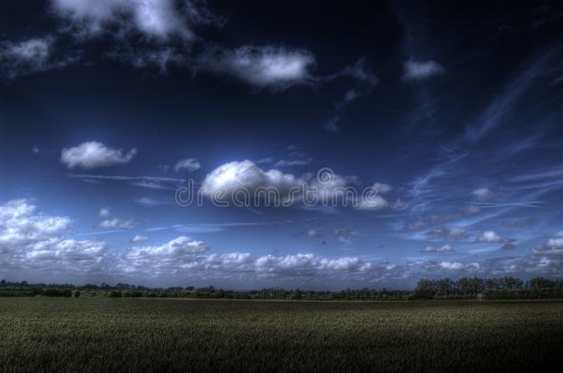 Cielo Campo-Dinamico del cereale (HDR) fotografie stock libere da diritti