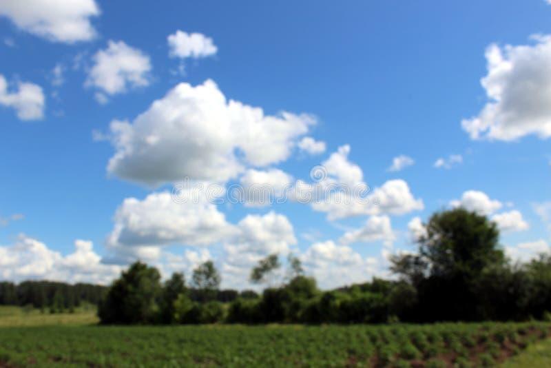 Cielo con las nubes blancas de la porci?n sobre ?rboles forestales Naturaleza y concepto de la libertad Foto borrosa imagenes de archivo