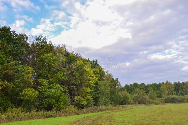 Cielo con las nubes Día soleado del otoño del campo y del bosque imagen de archivo libre de regalías