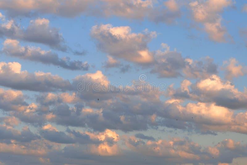 Cielo crepuscular de la puesta del sol, fondo con las nubes multicoloras Y SM imagen de archivo libre de regalías