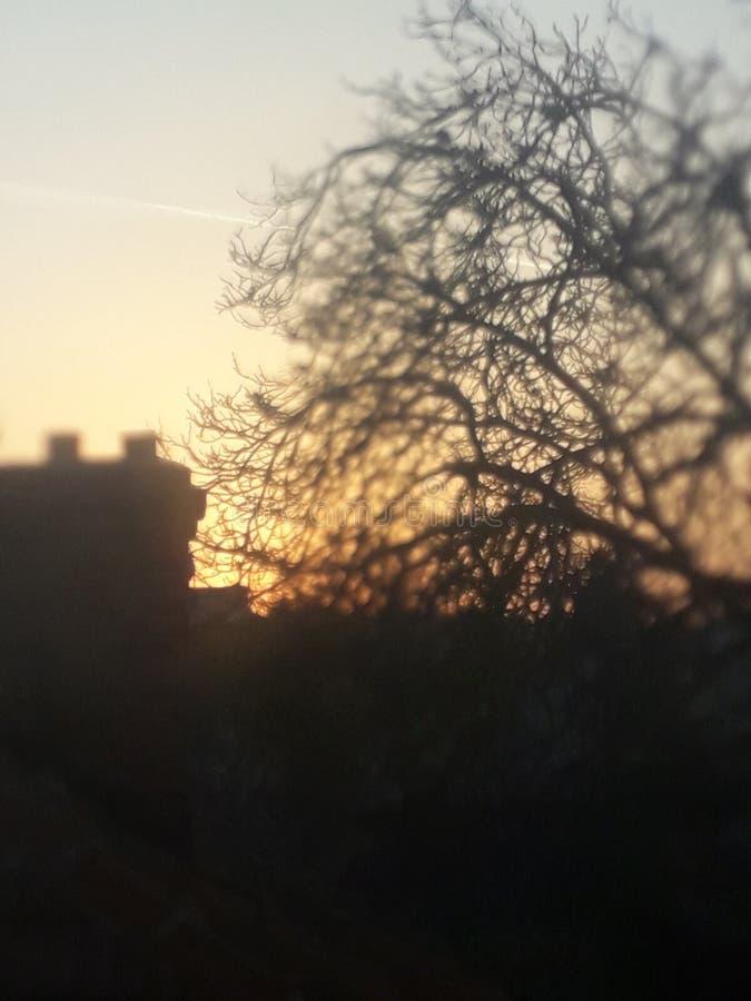 Cielo de la casa en el árbol de la puesta del sol de la falta de definición imagen de archivo