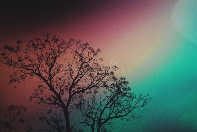 Cielo de la galaxia imagen de archivo libre de regalías