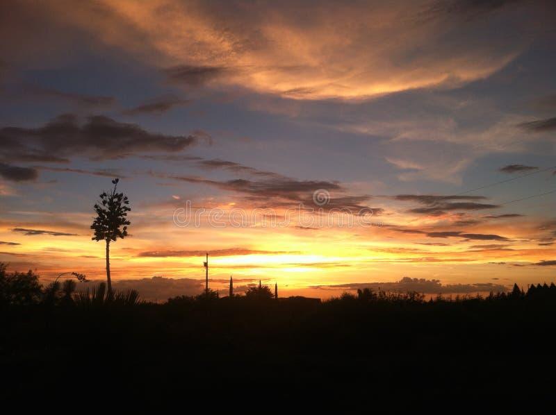 Cielo del deserto al tramonto fotografia stock libera da diritti