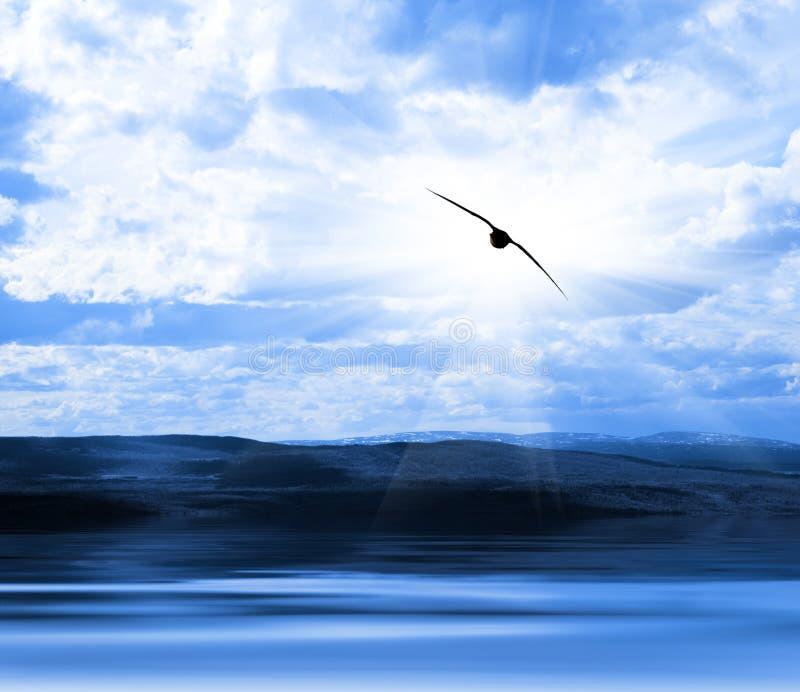 Cielo del litorale dell'acqua fotografia stock libera da diritti