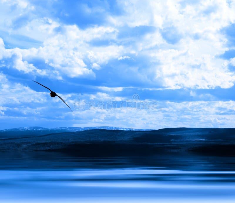 Download Cielo Del Litorale Dell'acqua Fotografia Stock - Immagine di chiarore, litorale: 7313642
