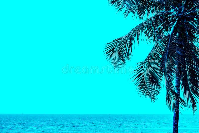 Cielo del verano en la playa fotografía de archivo