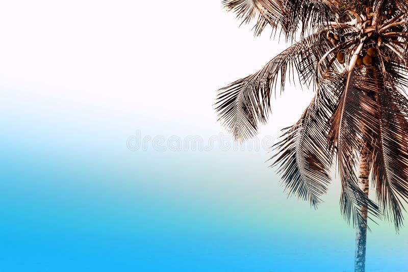 Cielo del verano en la playa foto de archivo