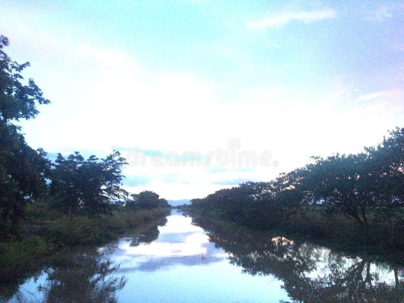 Cielo dell'albero del fiume fotografie stock