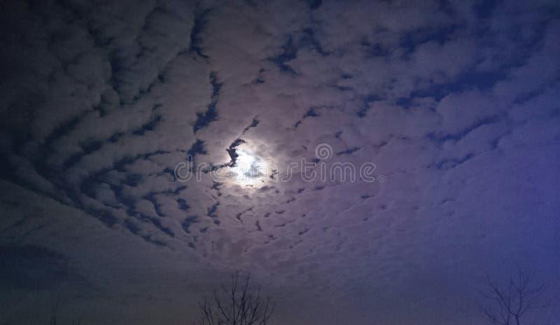 Cielo di inverno immagini stock