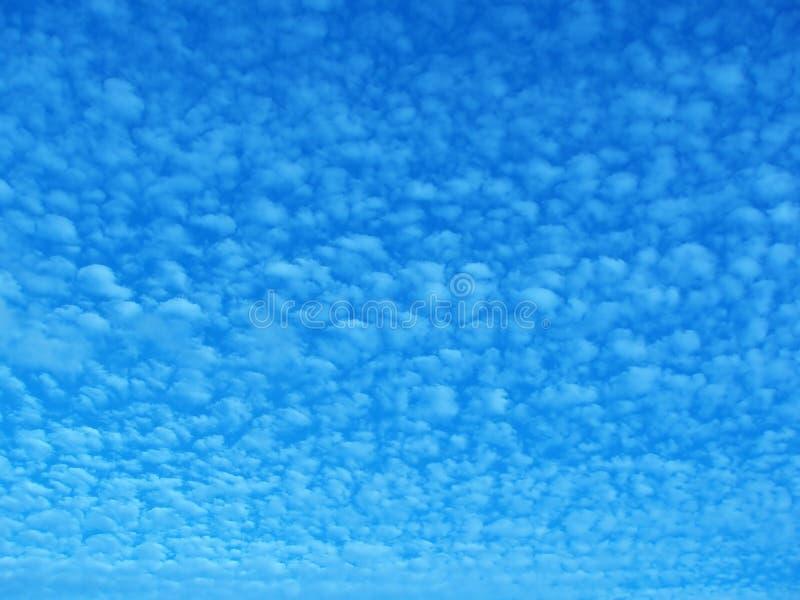 Download Cielo di sera fotografia stock. Immagine di background - 219322