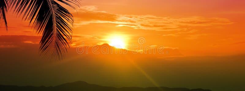 Cielo dorato di ora di tramonto con il sole sopra la montagna e foglia di palma per l'ampio fondo dell'insegna di vacanze estive fotografie stock libere da diritti