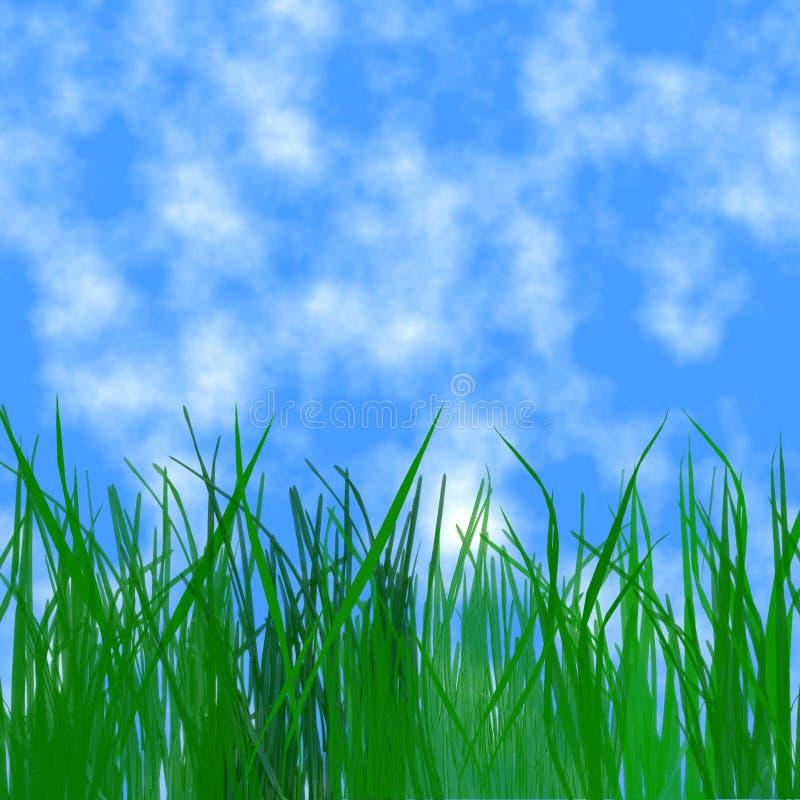 Cielo e hierba fotografía de archivo libre de regalías