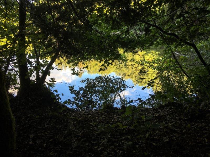 Cielo en el agua imagenes de archivo